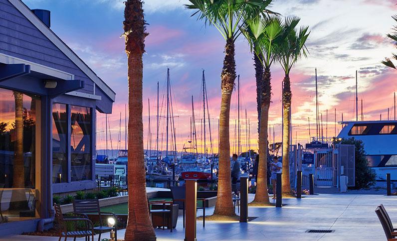 Gorgeous views of the marina